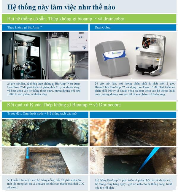 BioAmp - Xử Lý Hệ Thống Nước Thải