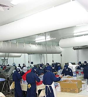 Nhà Máy Chế Biến Thủy Sản United Seafood